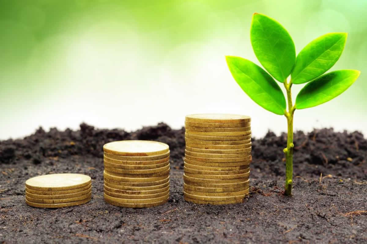 Three Benefits of Choosing to Go Green to Keep Your Business Clean